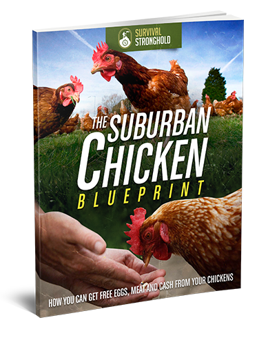 Suburban Chicken Blueprint