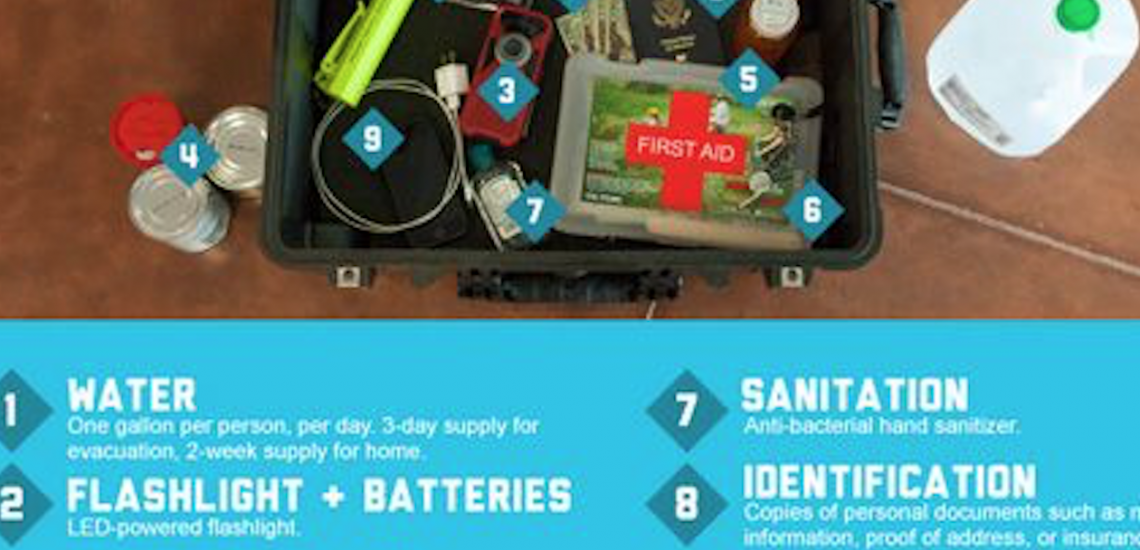 Disaster Preparedness [Infographic]