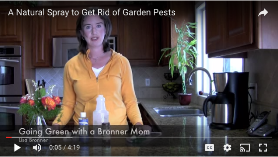 A Natural Spray to Get Rid of Garden Pests