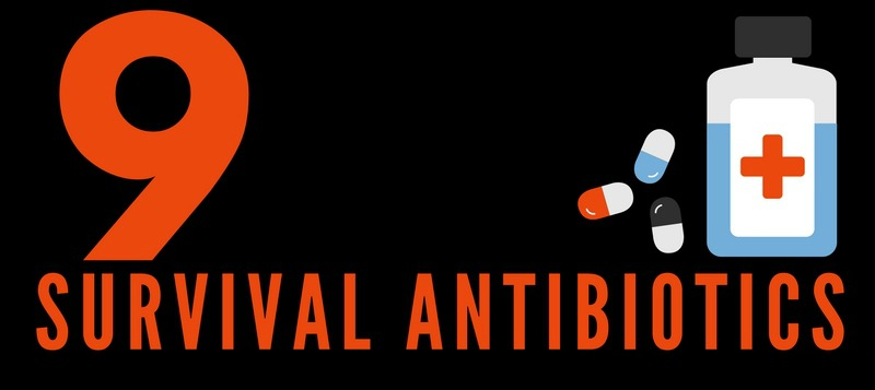 10 Survival Antibiotics (Infographic)