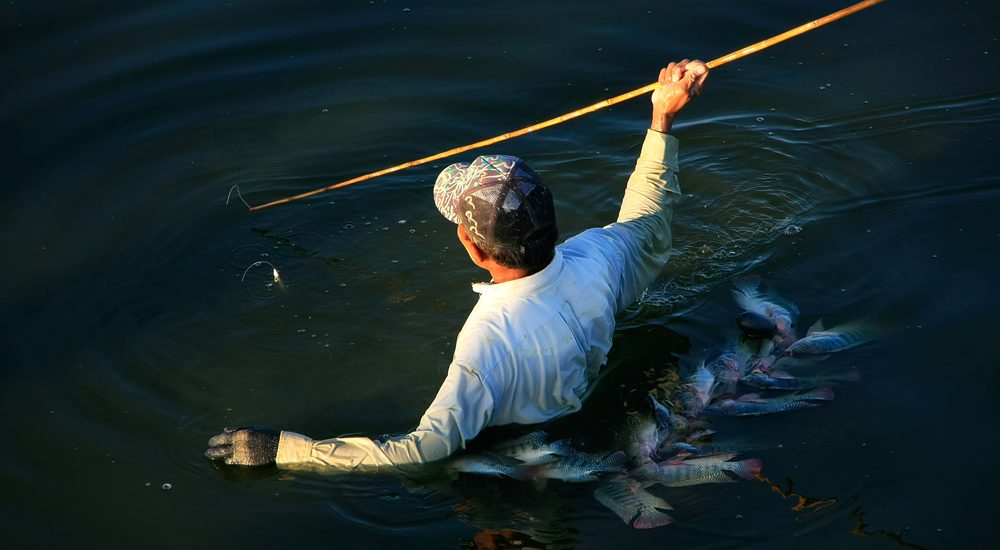 Tips for Spear Fishing