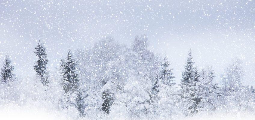 Lost Hiker Survives Blizzard