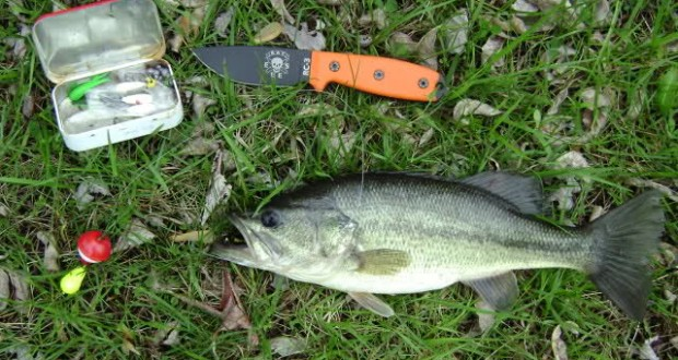Tips for Survival Fishing