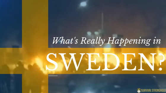 Survival News: What's Really Happening in Sweden?