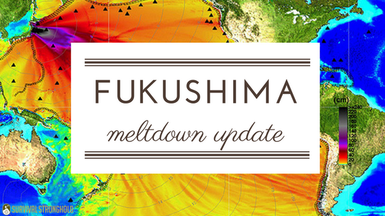 Survival News: Fukushima Update