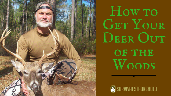 How to Get Your Deer Out of the Woods