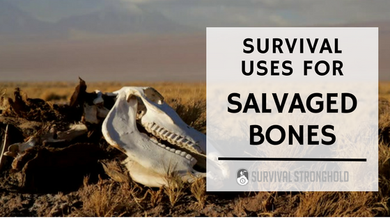 Survival Uses for Salvaged Bones