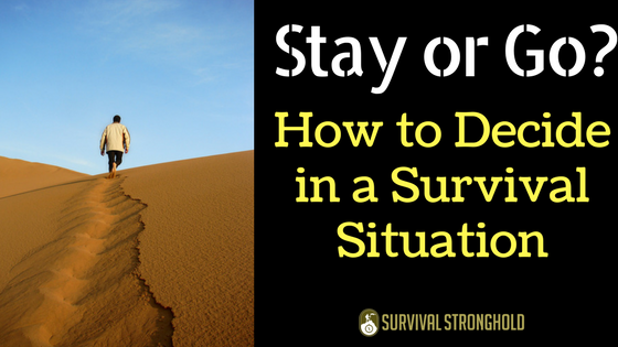 To Stay or to Go: How to Decide in a Survival Situation