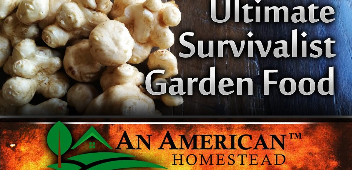 The Ultimate Survivalist Garden Food (Video)