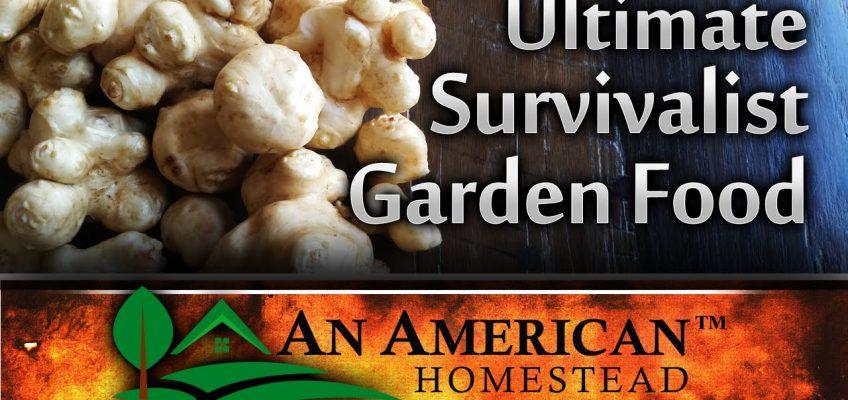 The Ultimate Survivalist Garden Food (Video)