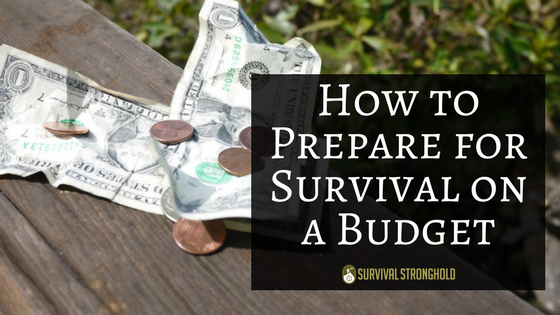 Preparing for Survival on a Budget