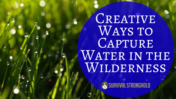 Creative Ways to Capture Water in the Wilderness