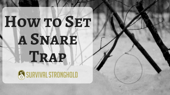 How to Set a Snare Trap