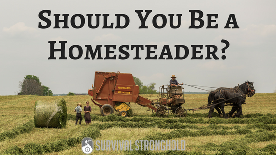 Should You Be a Homesteader?